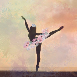 ballet pointeshoes pointe beauty happyness freetoedit