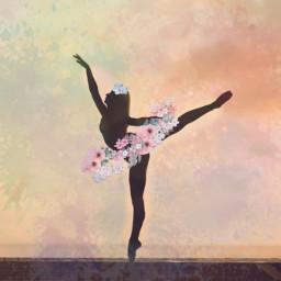 ballet ircballerinesilhouette ballerinesilhouette freetoedit