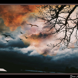 art photography sky skylovers cloudscape cloudsandsky photographyart artoftheday artofvisuals artist danalakat freetoedit
