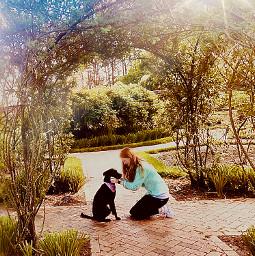 flowers dog girl mansbestfriend sunshine
