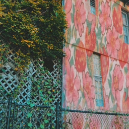 strawberry chicago aesthetic pink green city plants vines strawberries flowers print