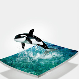 3deffect dolphin nature freetoedit