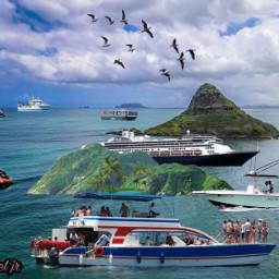 cruiseship jetski island birds freetoedit
