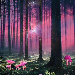 forest pink mystical psychedelic beautiful colors stayinspired vibes trippy surreal dream