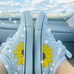 paintedshoes