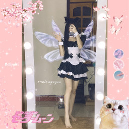pink butterfly freetoedit