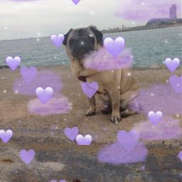 rip inkamydog doga srcpurpleclouds purpleclouds freetoedit