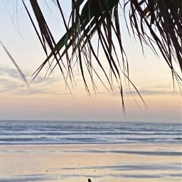 beach sunset walk pcmothernature mothernature