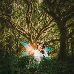 edit fairy fantasy magic nature challenge srcfloatingdandelions floatingdandelions freetoedit