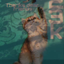 23k freetoedit myedit shadow cat bird glitch
