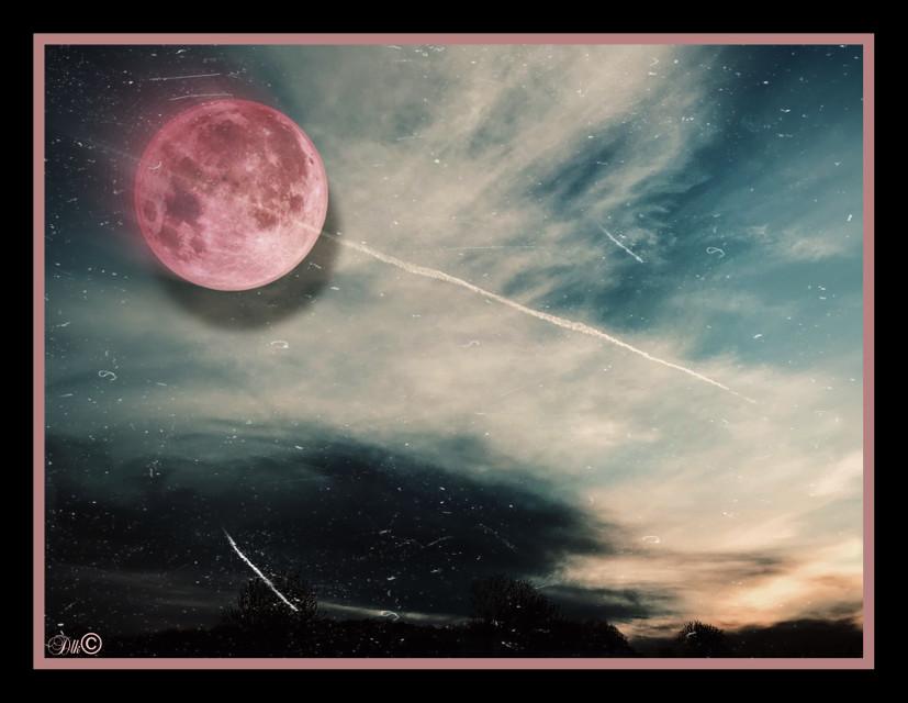 The moon was blushing© #art #photography #supermoon #pinkmoon #skyandclouds #horizon #artist #danalakat