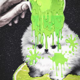 coffeecup slime puppy space freetoedit irccoffeetime