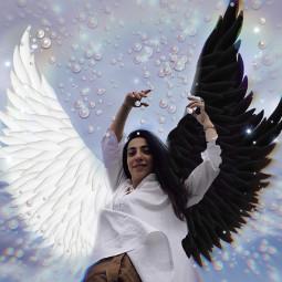 picsartchallenge freedom flytothesky yingyang rcyinyangwings yinyangwings freetoedit