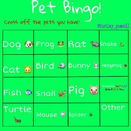 petbingo bingo bingogame bingogames newgame bethefirsttoplaymynewgame freetoedit