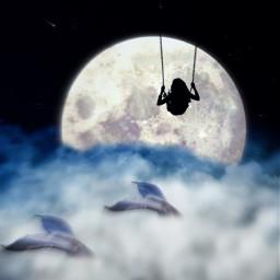 night moon star corde woman cloud whale cloudwhite blacknight beautifulpaysage tailofwhale tail freetoedit