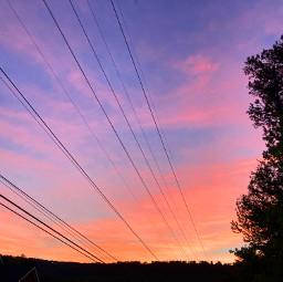 sky sunset pinksky orangesky purplesky forest