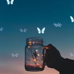 ircmagicfairyjar magicfairyjar freetoedit fee mystic märchen glass butterflys