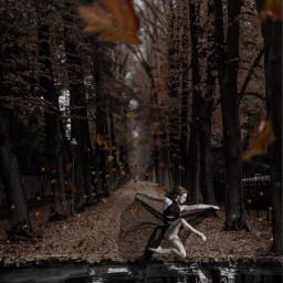interesting nature woods leavessticker womansticker doubleexposure photoblending surreal surrealism surrealistic surrealisticworld editedwithpicsart picsart heypicsart remixedfromfreetoedit freetoedit