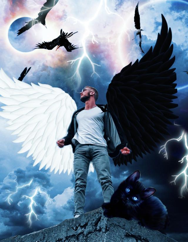 #rcyinyangwings #yinyangwings #wings #cat #men #love