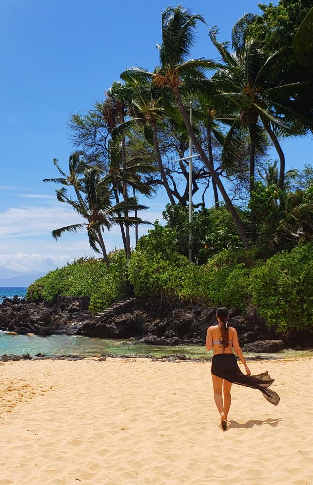 Throw back to Maui.........#sandybeaches #maui #hawaii #palmtrees #blueskies #ocean #pacificocean #travel #vibes #woman #beach #rocks #paradise #myoriginalphoto  #destination #travelphotography