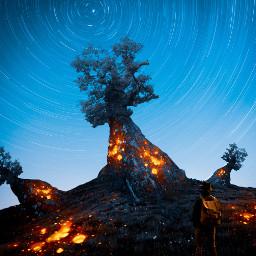 followmeplease night tree fantasy boy traveller lava magma 360 stars madewithpicsart editedbyme freetoedit