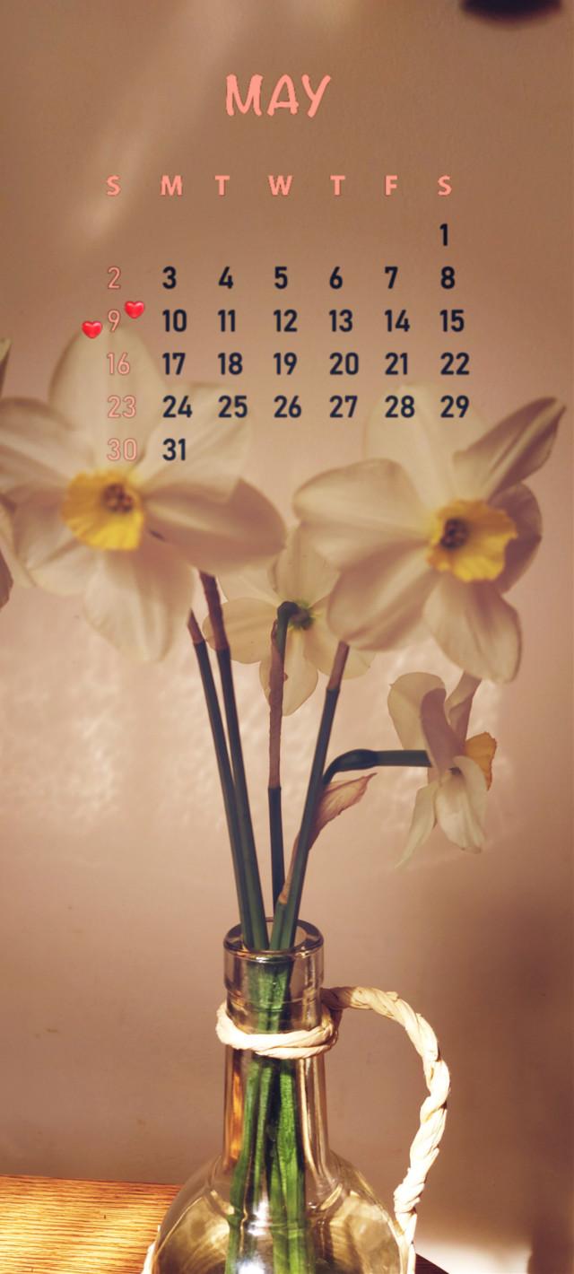 #last #daffodils #calendar