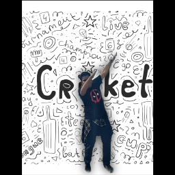 freetoedit rclivelovecricket livelovecricket cricket T20Cricket cricketfan