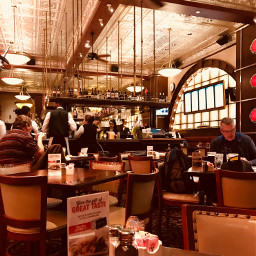 freetoedit pappadeaux restaurant peoplewatching everydaylife layover airportrestaurant copperaesthetic bronzeaesthetic pctheviewiadmire