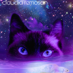 desafio challenge esteticaroxa purple cat catandfish ccpurpleaesthetic purpleaesthetic