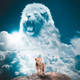 madewithpicsart madebyme picsart instagram art surreal lion lionking lioncub lionface king clouds sky animaleye fotoedit nature jungle forest animal animals predator beast heypicsart artwork dailyinspiration freetoedit