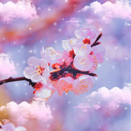 aesthetic cherryblossom flower cherryblossomaesthetic floweraestjetic blossom blossomaesthetic plant mothernature tree branch clouds cloud cloudaesthetic sparkles notreal saturated pink purple somanycolors multicolored freetoedit