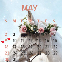 horse flowerhorse beautiful maycalendar2021 may2021 flowers srcmaycalendar2021 freetoedit