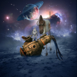 astronaut stier freetoedit