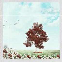 flowers tree birds bluesky clouds freetoedit