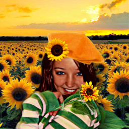 brianna sunflowerfield happiness sunset birdsflying freetoedit