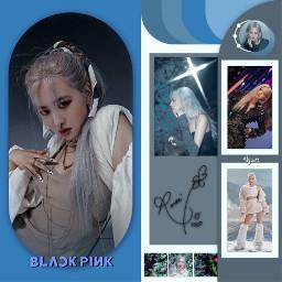 rose rosé blackpinkrose roseedit blackpinkchaeyoung blackpink parkchaeyoungblackpink kpop freetoedit