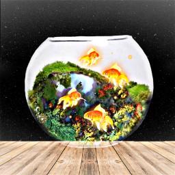 gold fish bowl aquarium srcgoldenfish goldenfish freetoedit