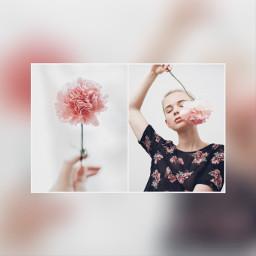 コラージュ collage ピンク pink ぼかし blur picsart picsartjapan
