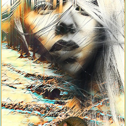 edited art inspiration madewithpicsart artistic stickers magiceffects collage dreamscape portrait rat freetoedit unsplash