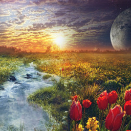 surreal fantasy landscape meadow flowers stream sunset planets freetoedit