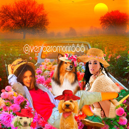 girls animals dogs flowers ircthebeautyinhaze thebeautyinhaze freetoedit