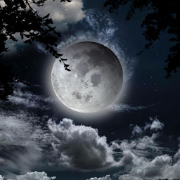 freetoedit myedit fullmoon night silhouette light moonlight araceliss sky clouds cloud