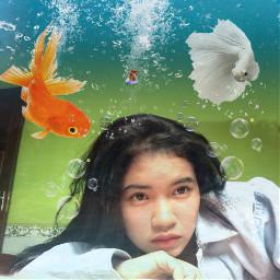 pic edit fish freetoedit