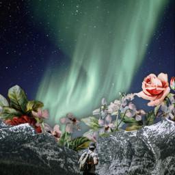 freetoedit northernlights flowers mountain nightsky aestheticsky collage surreal plrd3 heypicsart unsplash