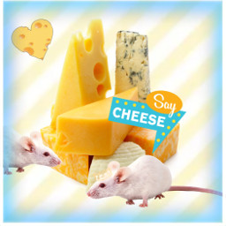 cheese mouse freetoedit