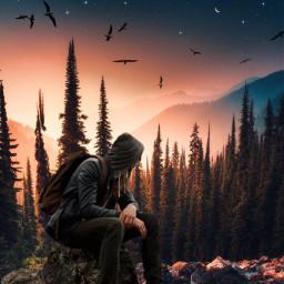 freetoedit sunset madewithpicsart araceliss birds forest sky boy