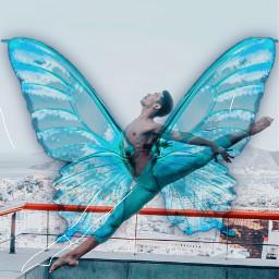 interesting art wings dance ecbutterflywings butterflywings freetoedit