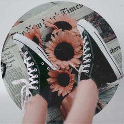 shoesunfloweraesthetic ircstepbystep stepbystep freetoedit