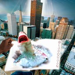 city uphigh shark boom notebook cityscape storm skyskrapers freetoedit ircblanknotebook blanknotebook