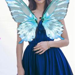 lovelycolors curvestooleffect ecbutterflywings butterflywings freetoedit